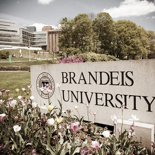 Brandeis University - Director: #Angela Um SMN