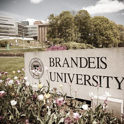 Brandeis University - Directors:#Samuel Gao#Susan Liu