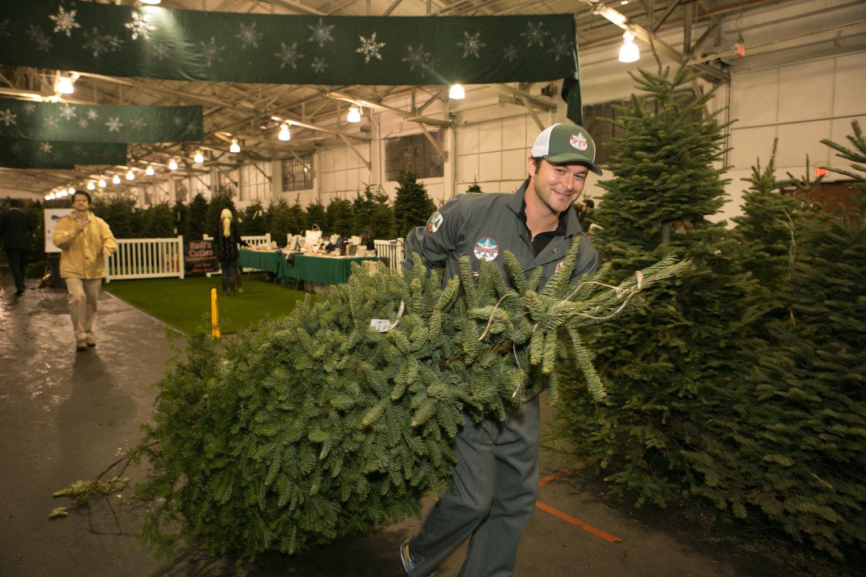 The Guardsmen Christmas Tree Lot A San Francisco Tradition