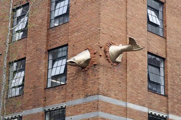 """Carp Stuck in building."""