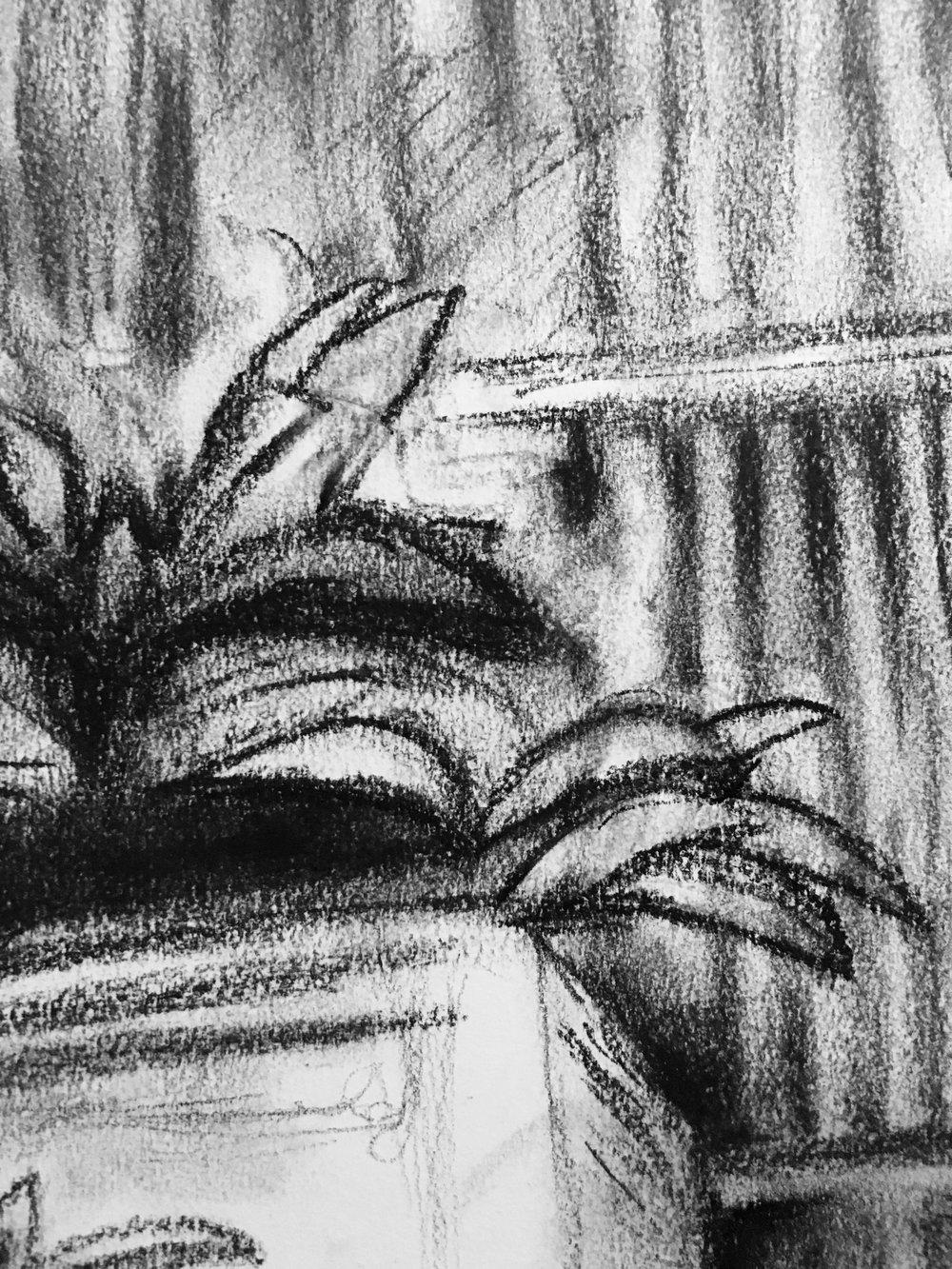 Closeup of erased/re-drawn greenery
