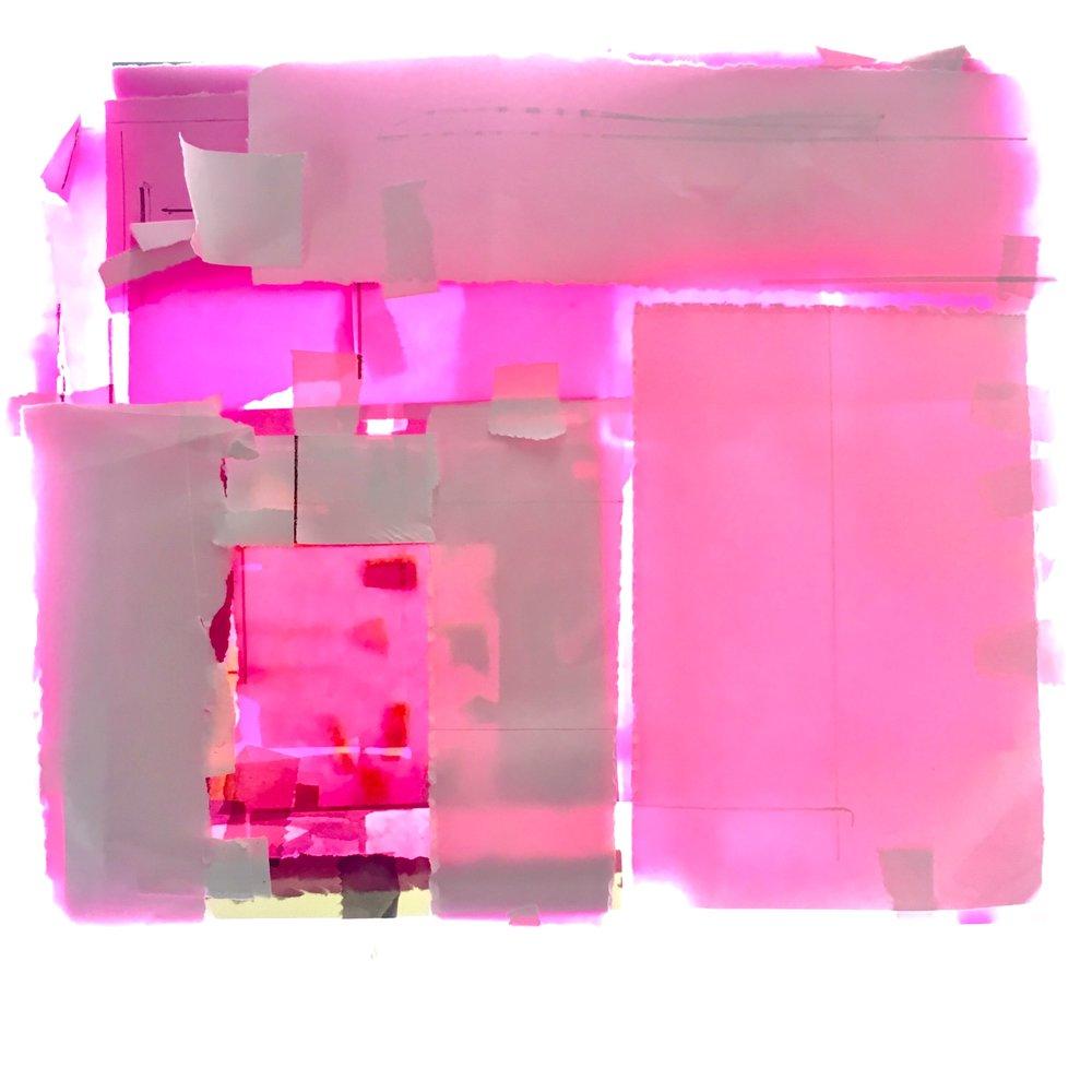 Stuart Shils pink-242(1).jpg