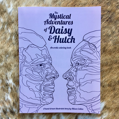 The Mystical Adventures of Daisy and Hutch — allison collins studio