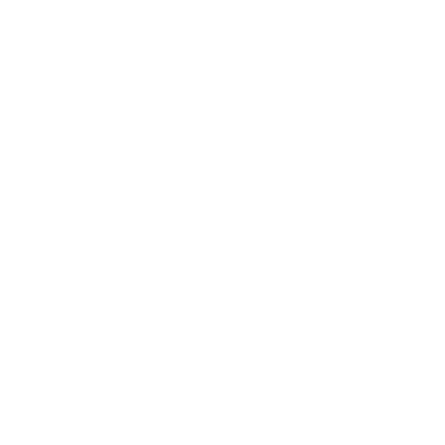 Verify Icon.png