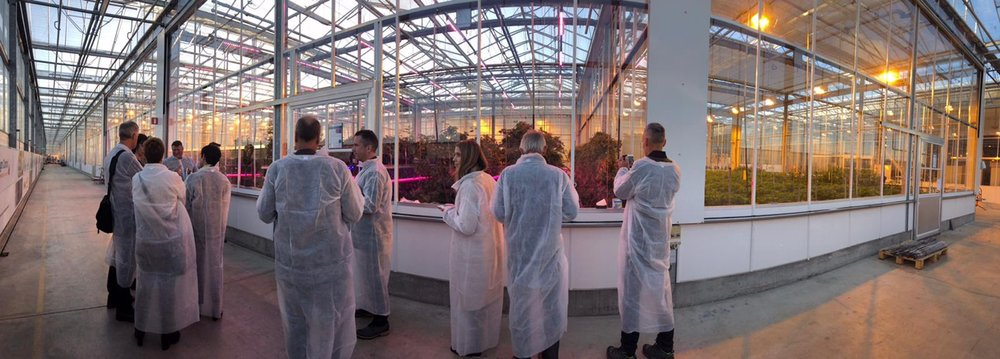 NZ AgriFood delegation visiting the world horticentre in Amsterdam.