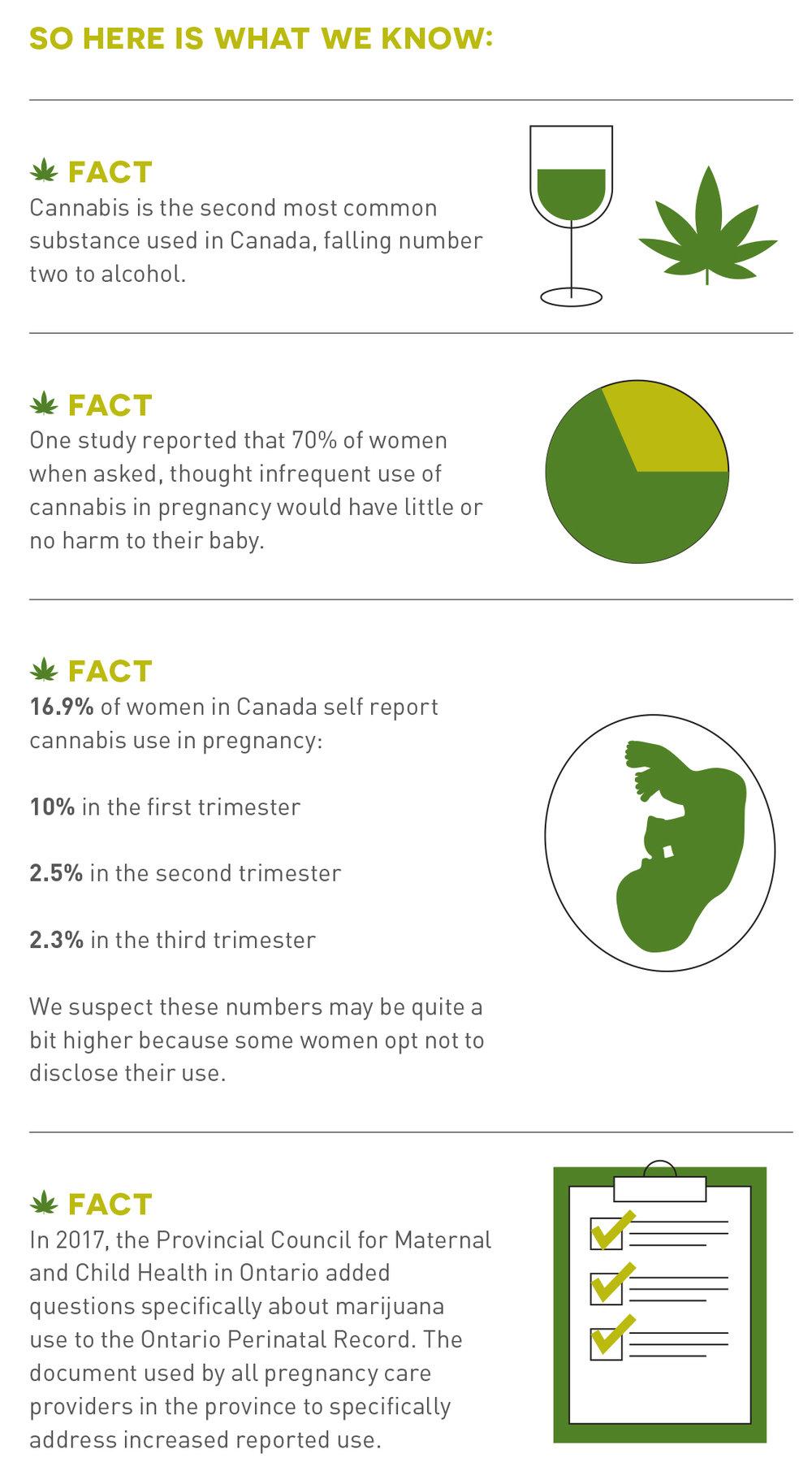 HolisticParent_Spring2019_21 - infographic.jpg