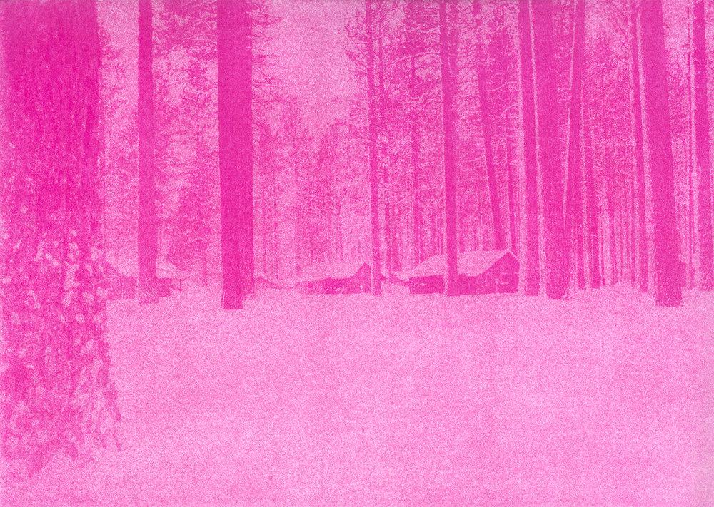Pinkscape#3_Selvaggio_Dordetti.jpg