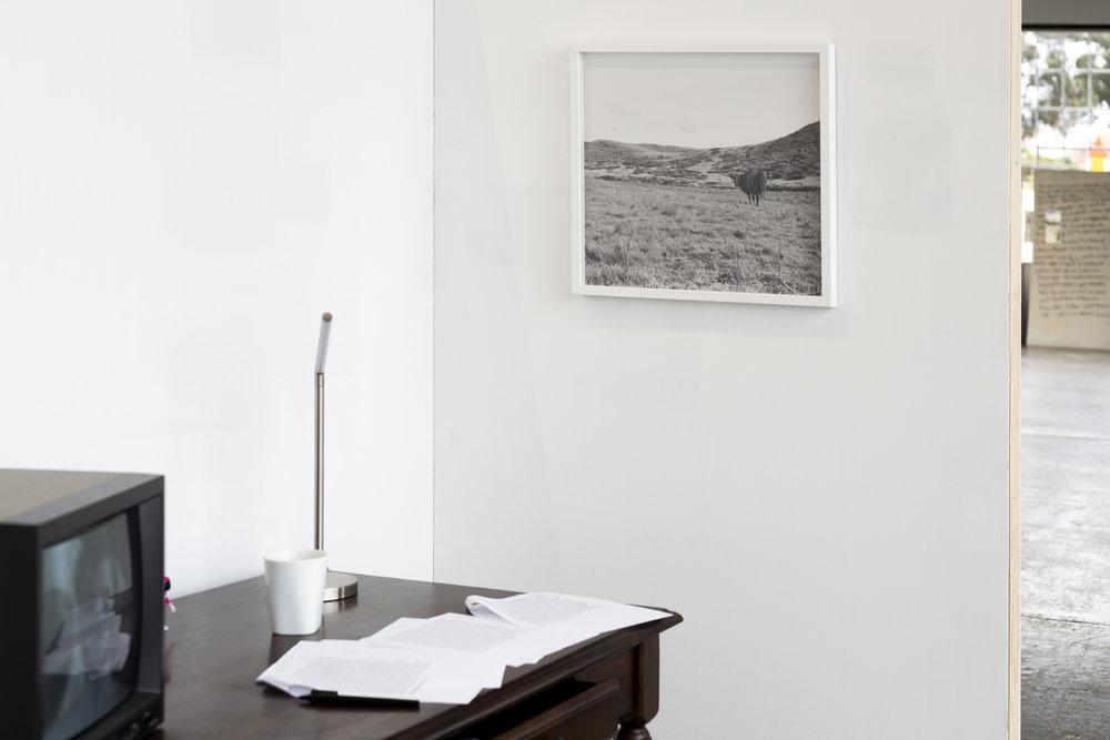 Apartment-501_6.jpg