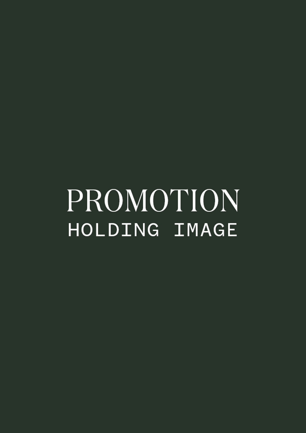 promotion_holding_a4.png