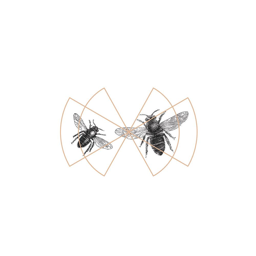 Web-Bees copy.jpg