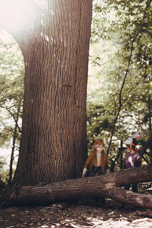 Animalesque Big Trees Fox + Rabbit_1.jpg