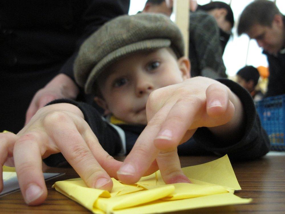 4.origami-kew-waterlily.jpg