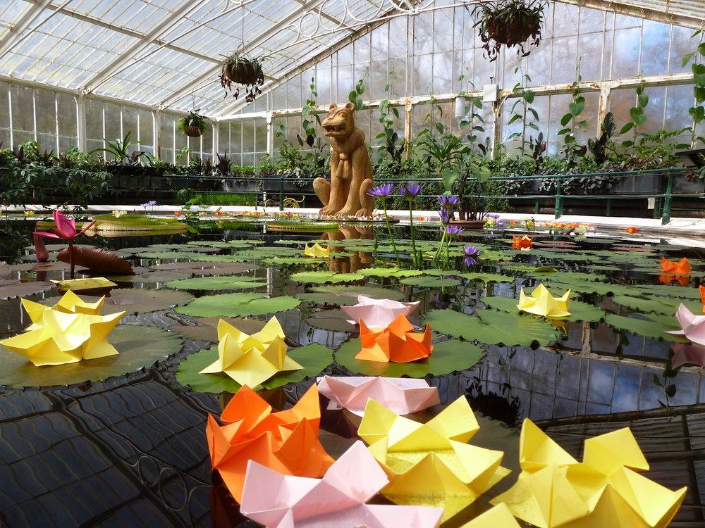 4-origami-kew-gardens-water-lily.jpg