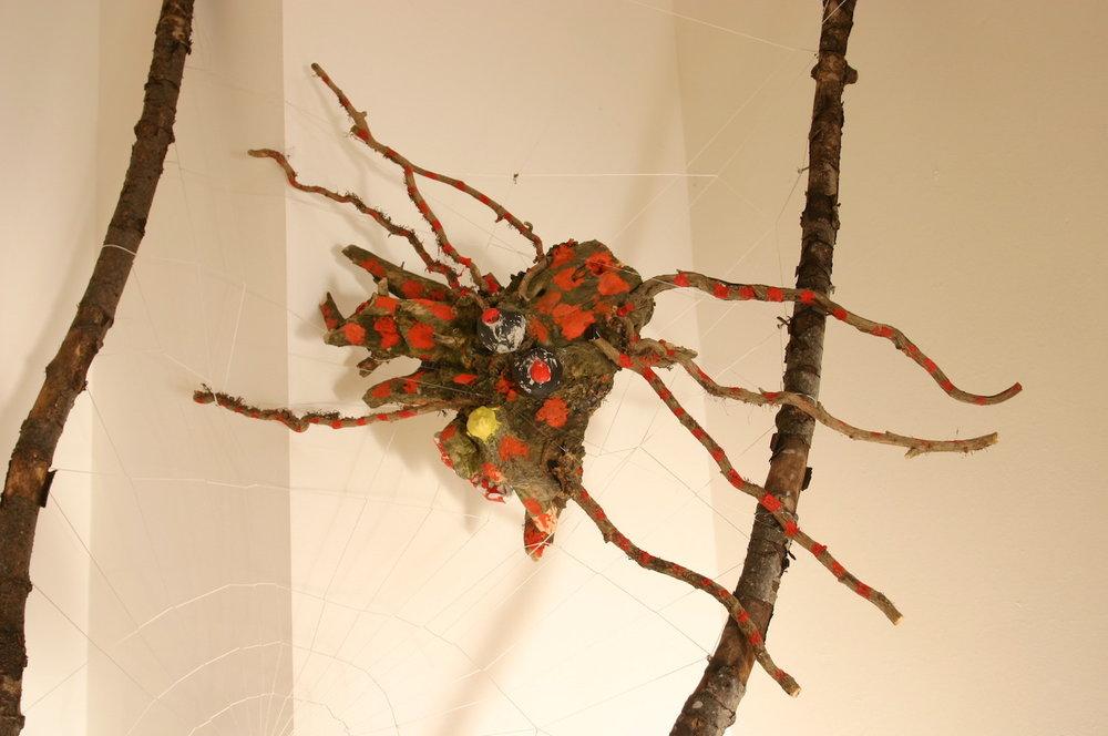 3-wood-craigmillar-castle-park-edinburgh-spider.jpg