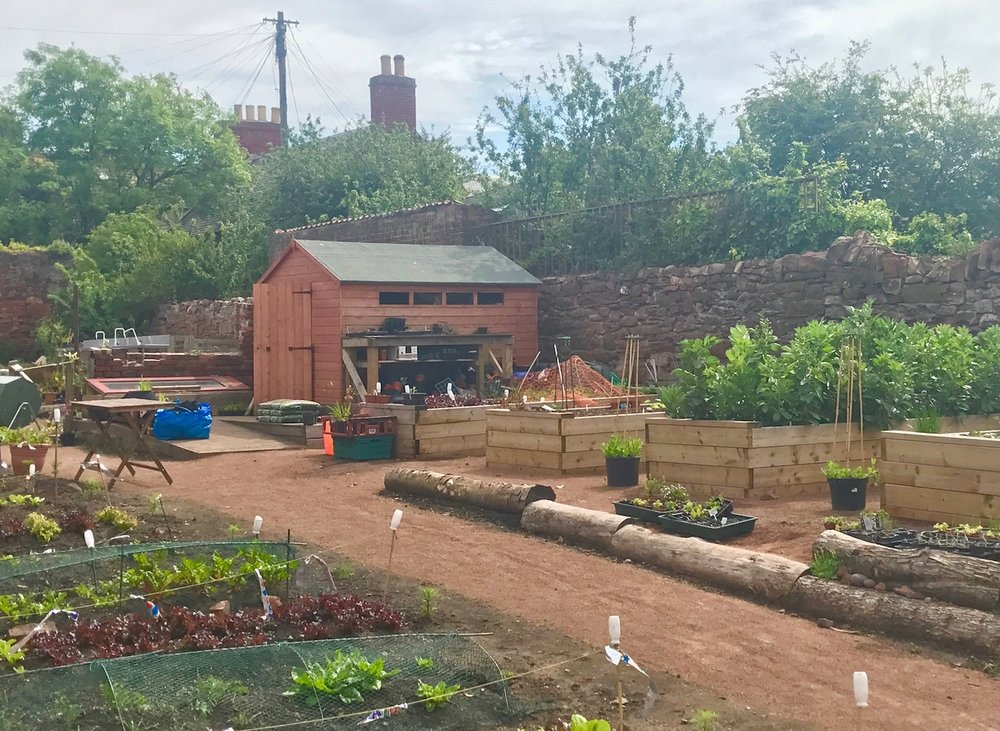Backlands Community Garden -