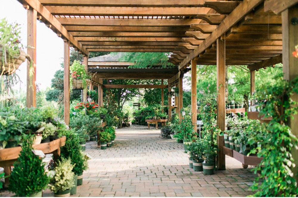 The Garden Center -