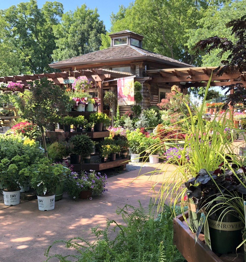 Membership Discounts - If you are a member of the Friends of the Arboretum, Master Gardeners or Yew Dell Gardens, please show your card or name badge and receive a 10% discount off of regularly priced plants.