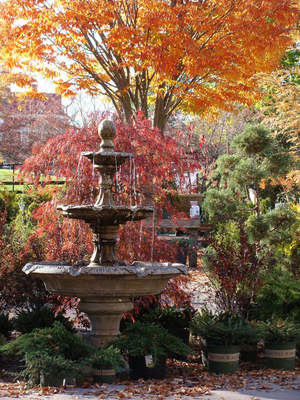 Fountain in Fall 10-2014.jpg