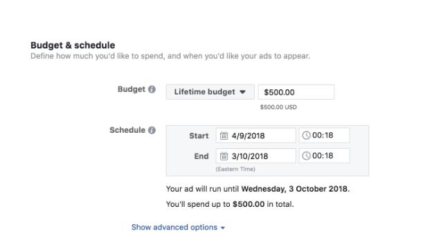 Facebook adjust lifetime budget