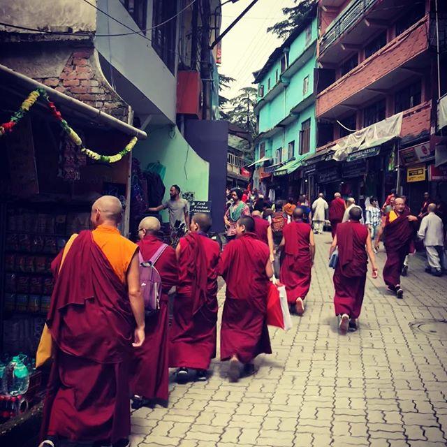 Attending His Holiness The Dalai Lama's teachings - Dharamsala