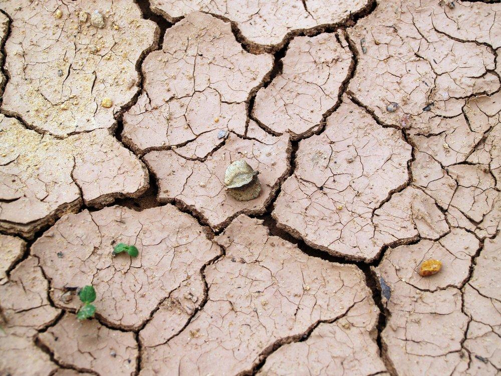 arid-barren-clay-216692.jpg