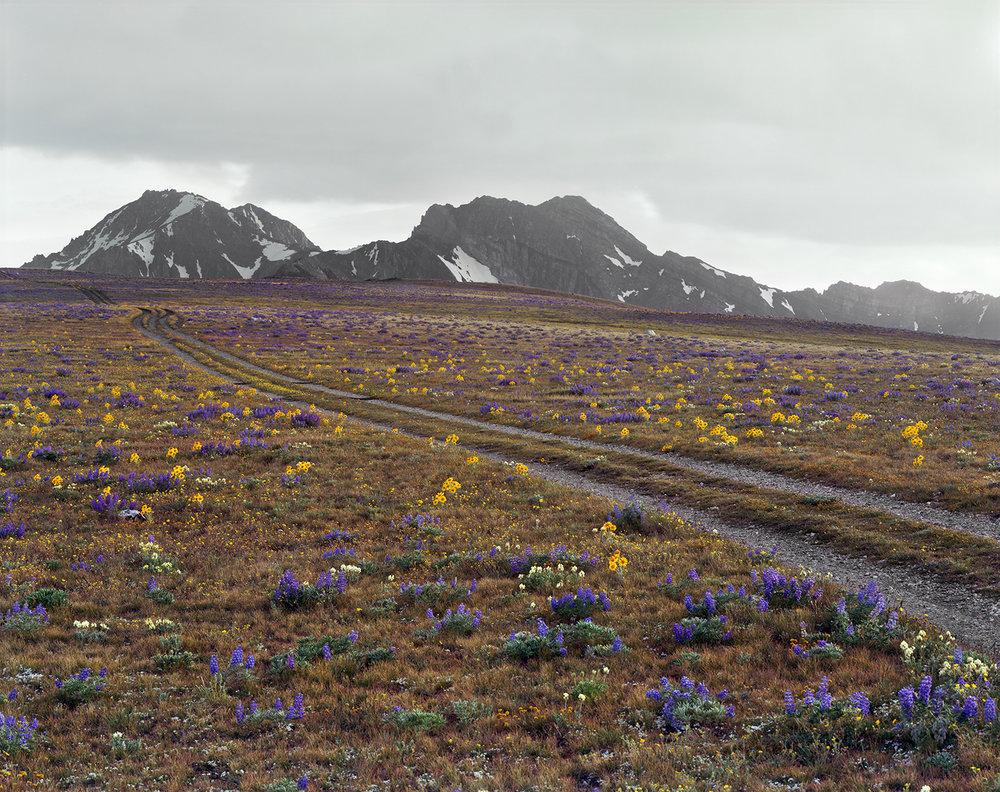 Jim Creek-Livingston Mine Road at 10,000 Feet, Railroad Ridge, Custer County, Idaho, 2011