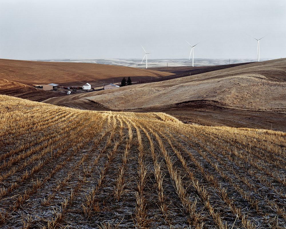 Wheat Fields in the Palouse, Columbia County, Washington, 2015