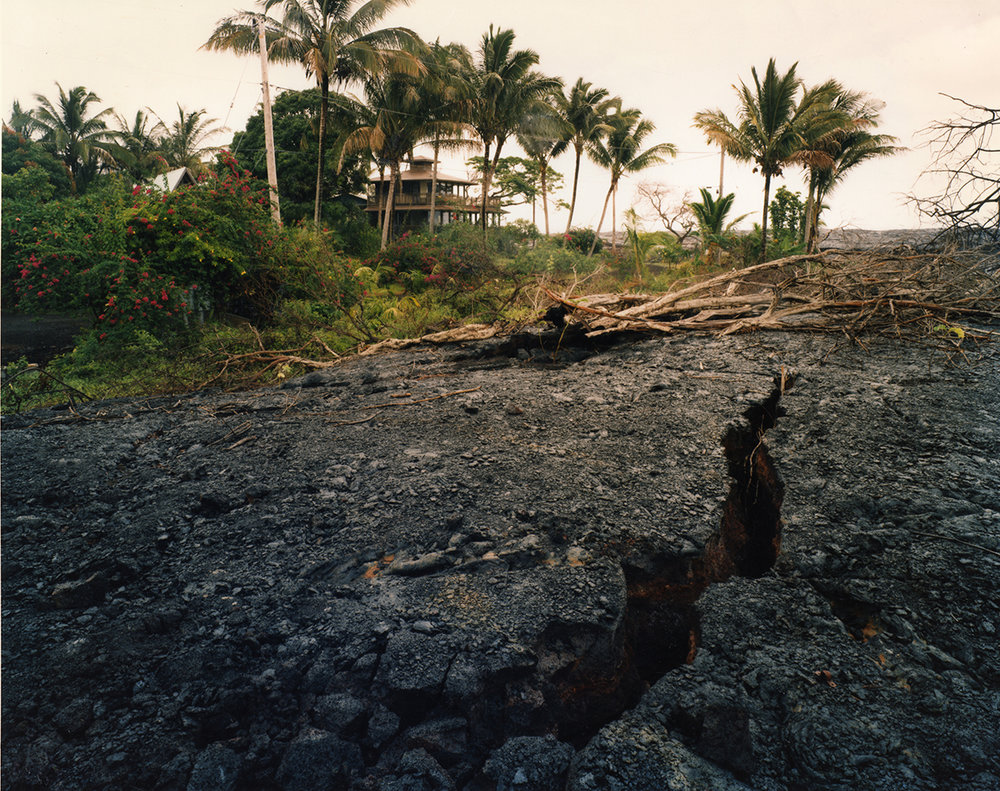 Edge of the 1990 lava flow where it crosses Route 130, Kalapana Gardens subdivision, Kalapana, Hawai'I, 1991
