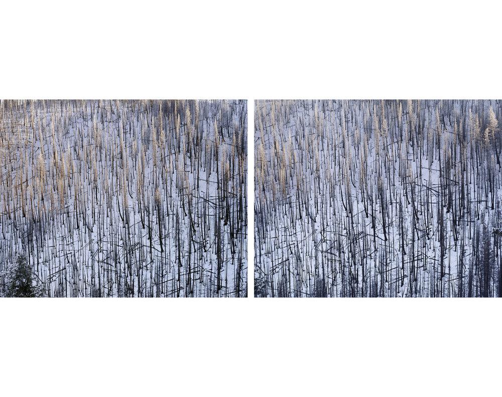Dollarhide+Mountain+Above+Warm+Springs+Creek,+Blaine+County,+Idaho,+2014.jpg