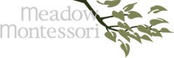 meadow-montessori-school-sitelogo.png