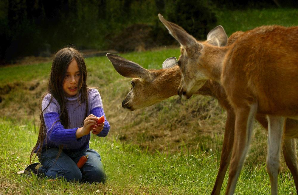 Precious Innocence - Digital Photograph, 2004, © Ellen Banner