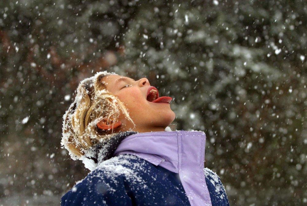 Snow Day—School's Out - Digital Photograph, 2003, © Ellen Banner