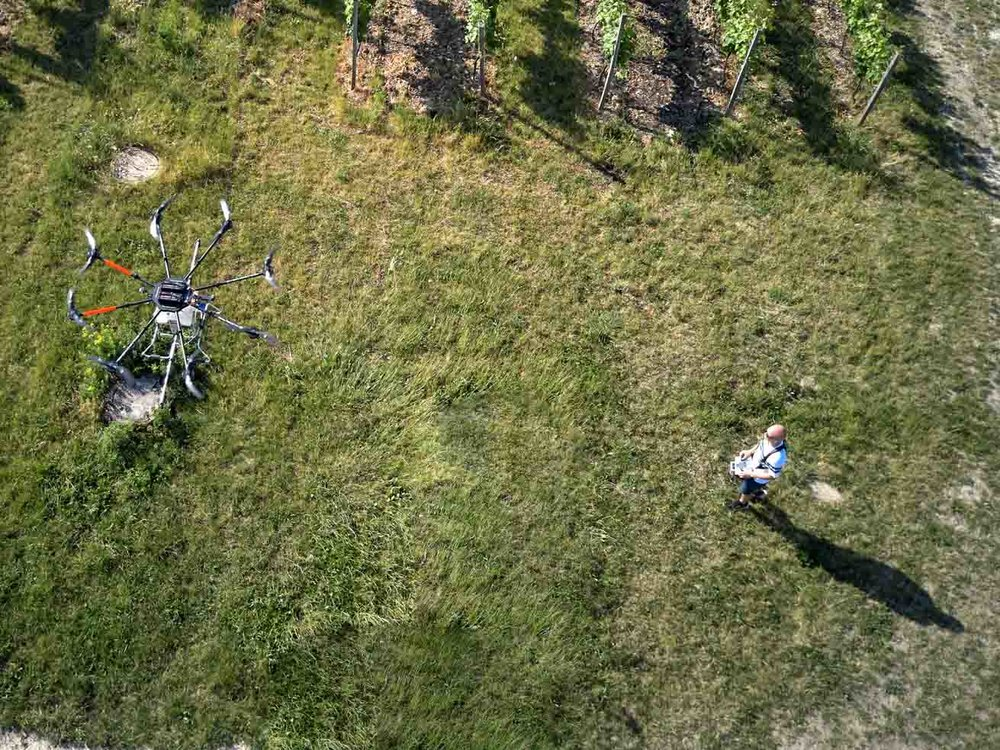 Drohne-Pflanzenschutz.jpg