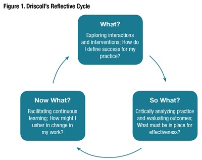 Figure1-Using-Reflection-Advance-Professional-Expertise.jpg