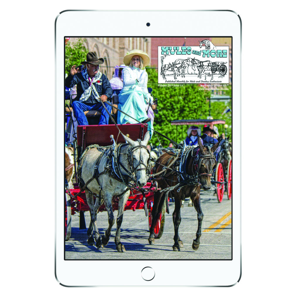 Mules and More is now offering an online subscription service. - Read Mules and More anytime, anywhere, on the device of your choice!