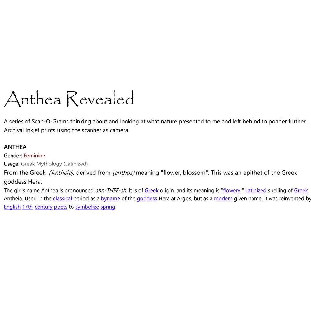 Anthea.jpg