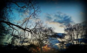 Dusk-Resized-by-Diamante-Lavendar-300x184.jpg
