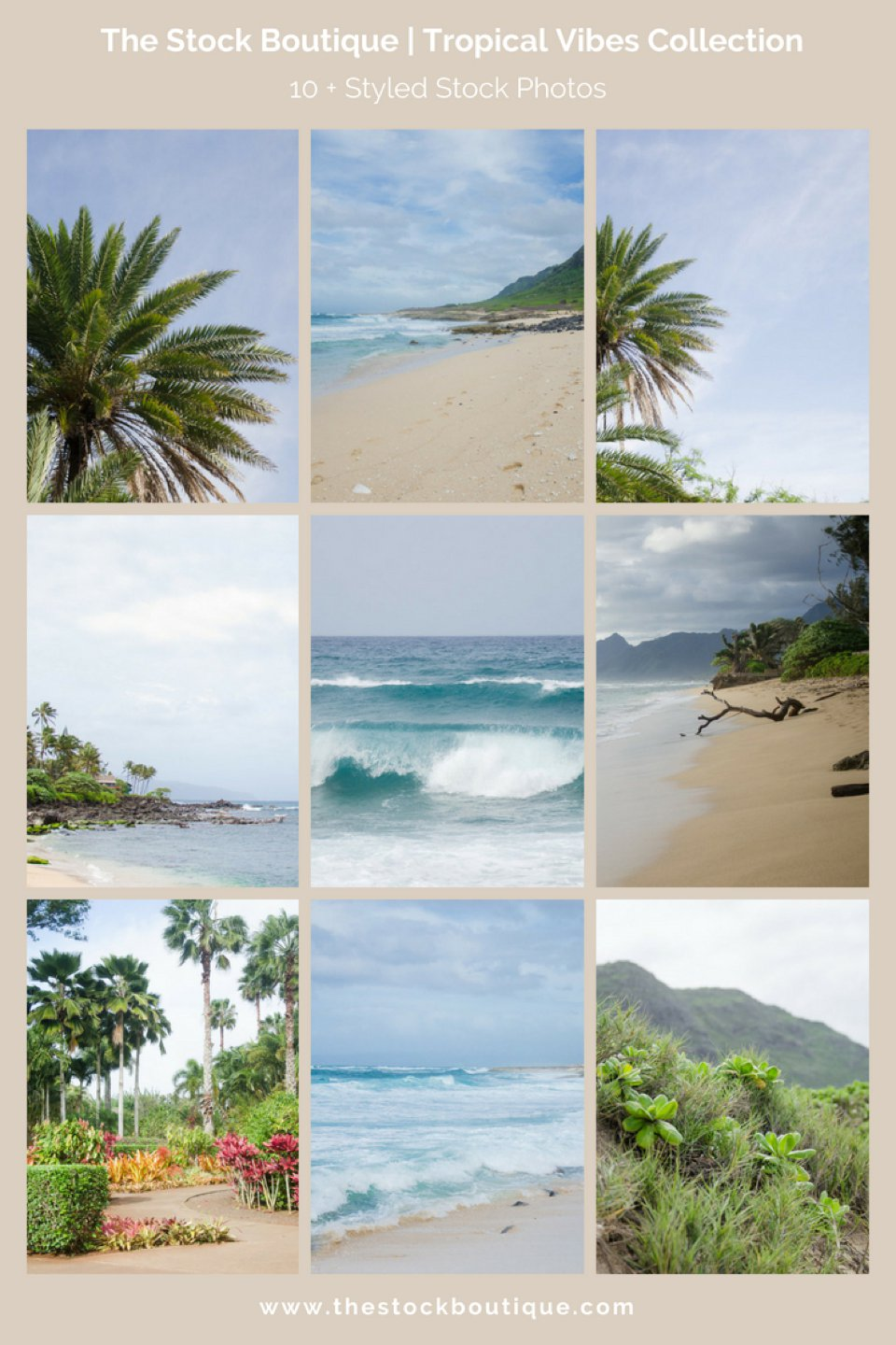 Tropical Vibes Stock Photography Collection. We giveaway a stock photo every month when you subscribe! www.thestockboutique.com   #stockphoto     #femaleentrepreneur     #smallbusiness