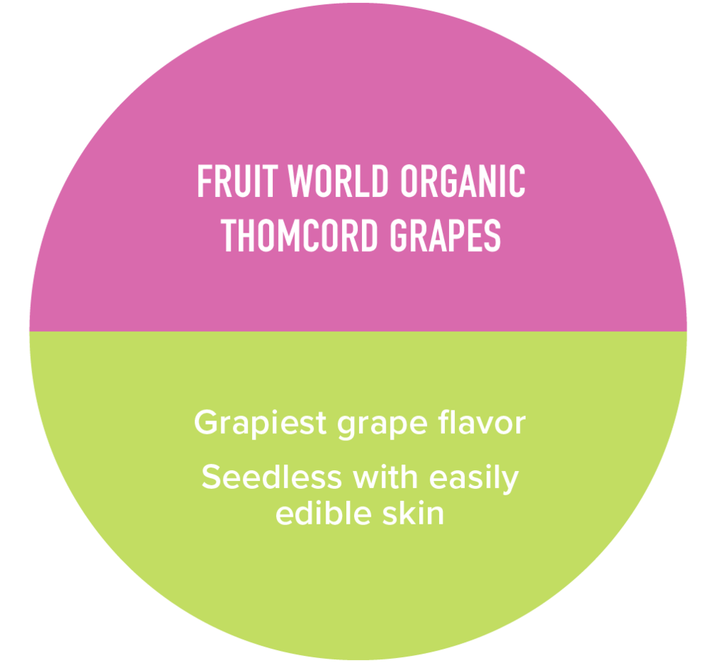 GrapesGraphicPiece2-01.png