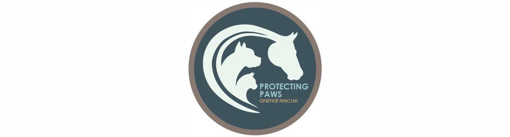 Protecting Paws 2.jpg