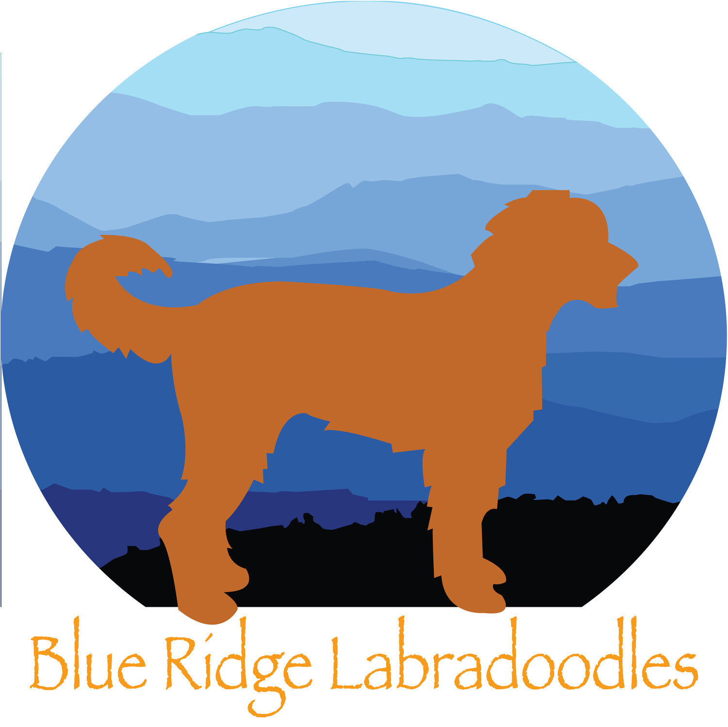 Blue Ridge Labradoodles
