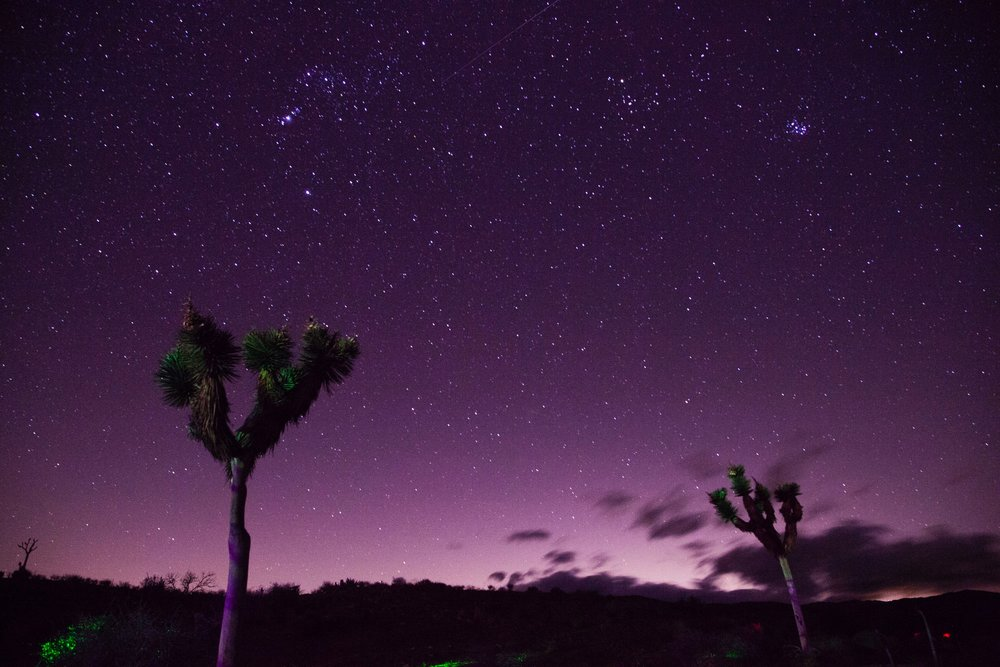 astronomy-backlit-dark-735651.jpg