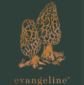 evangeline    Fine textile company based in Portland, Maine (also curator of fine art and vintage furniture).  In every Evangeline piece we hope that we've captured a bit of the wild, the resilience, and the warmth of Maine with simple materials woven to be used daily.