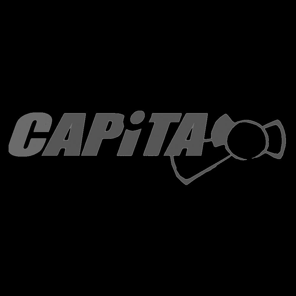 capitalogo.png