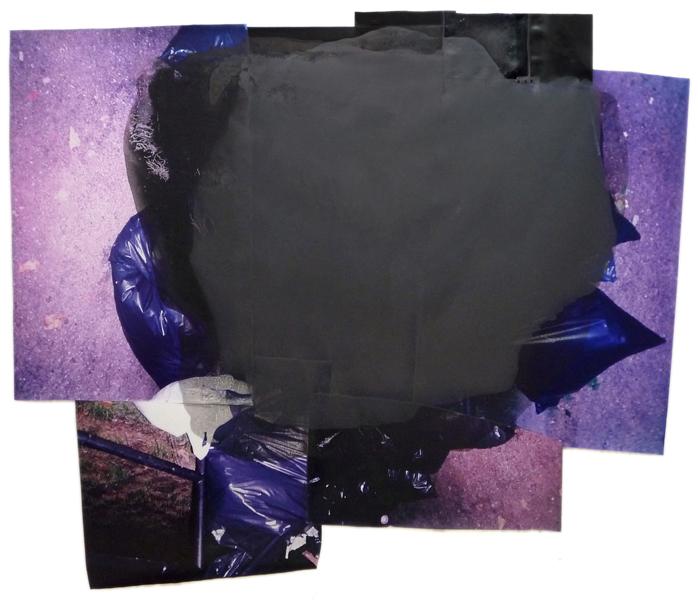 "Bloom  69"" x 81""  oil on collaged c-print  2012"
