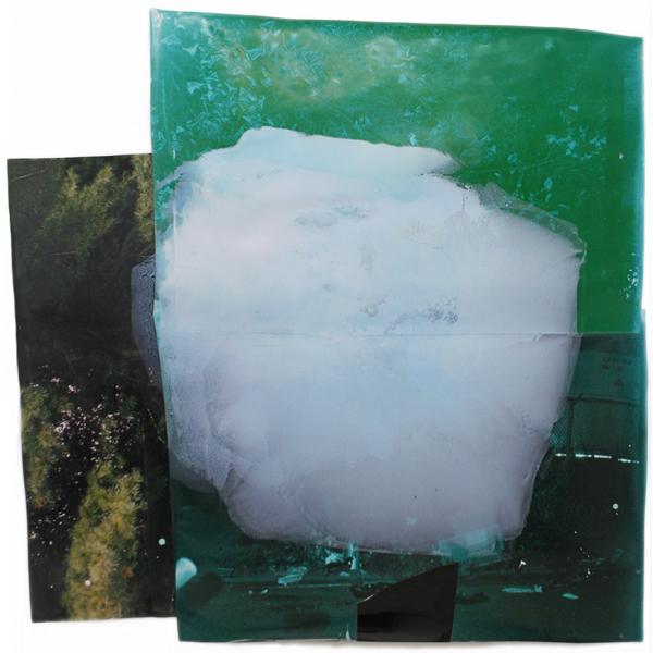 "Pine  73"" x 71""  oil on collaged c-print,  2011"