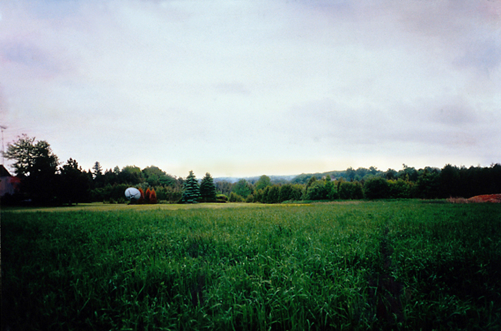 "Field with satellite dish  39"" x 26""  oil on c-print  2001"