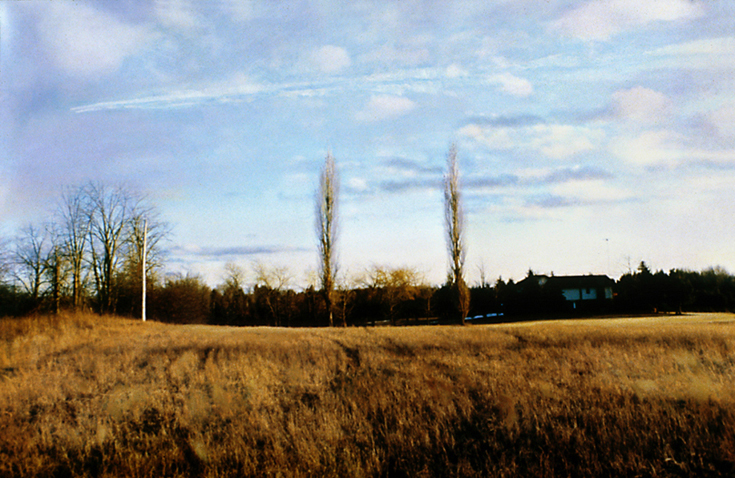 "Vapour trail  37"" x 26""  oil on c-print  2001"