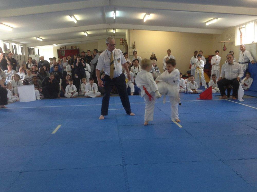 kyokushin-karate-bendigo_moorabbin.jpg