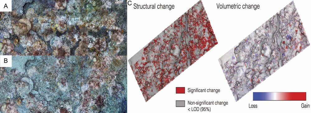 Quantifying impacts of disturbance to coral community structure and 3D habitat complexity